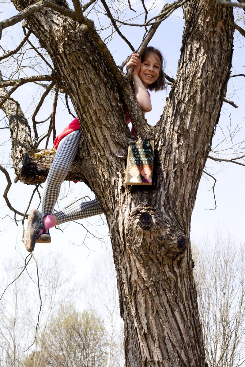 tabliczka powieszona na drzewie